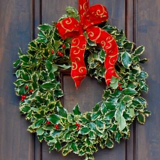 """""""Holly Wreath"""""""