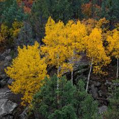 John Brown Canyon