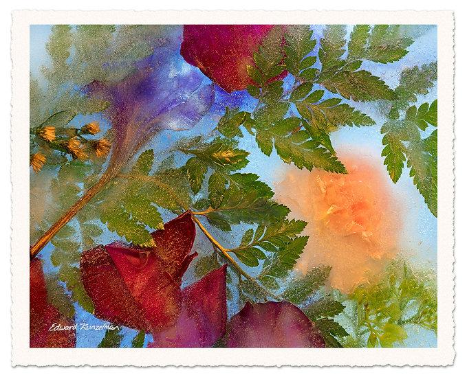 Cover-Artwork-Ice-Flowers.jpg