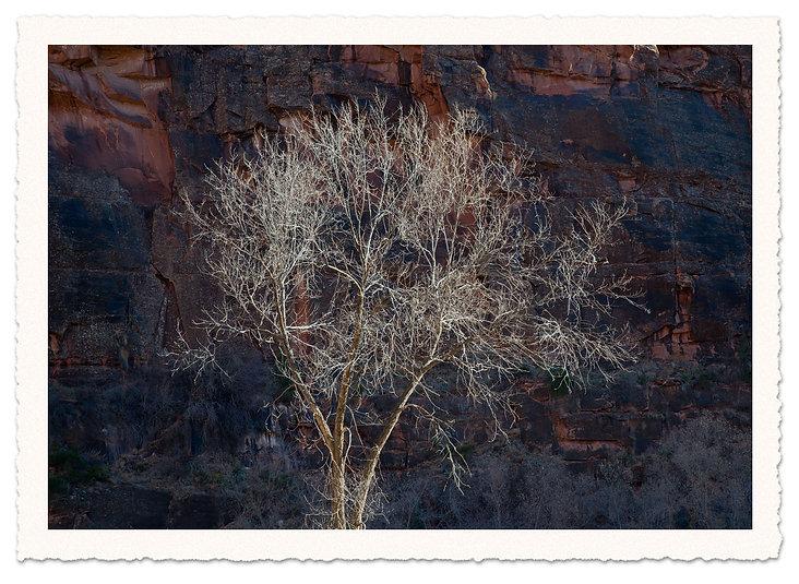 Dolores-Canyon.jpg