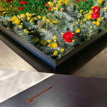 Kunzelman-Gallery-Mount-1.jpg