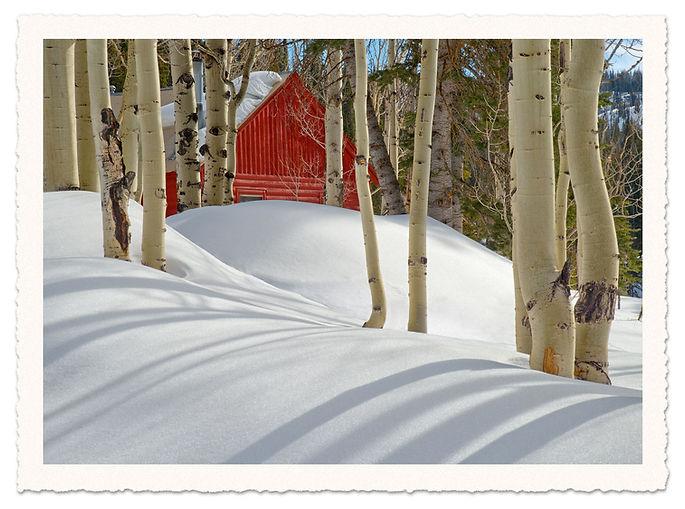 Grand-Mesa-Cabin.jpg