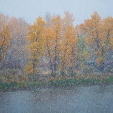 Autumn Snowstorm, Connected Lakes