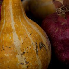 Gourd and Pomegranite