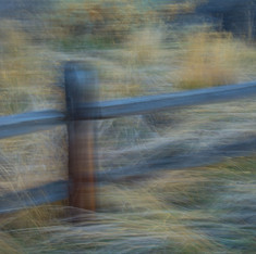 Passing Fence