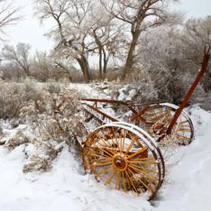 Abandoned Hay Rake, Redlands