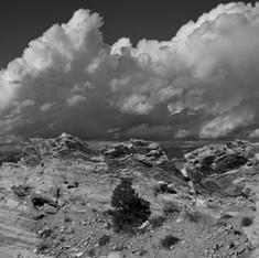 Redlands View
