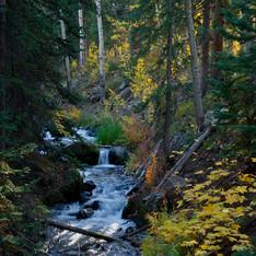 Grand Mesa Stream