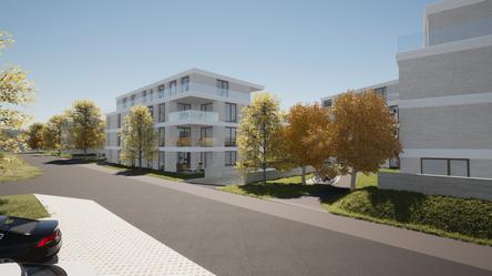 Arealentwicklung, Weinfelden