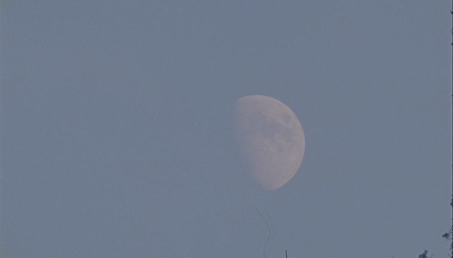 Moon summer 2020