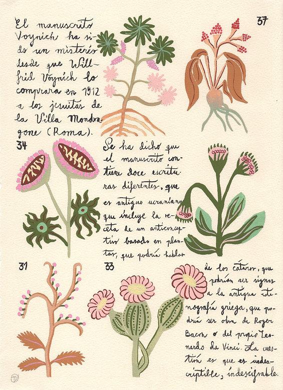 Voynich3-MarinaSiero.jpg