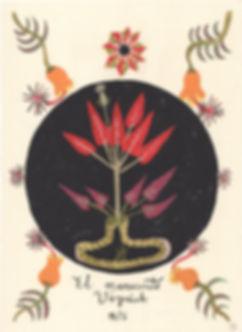 Voynich-1.jpg