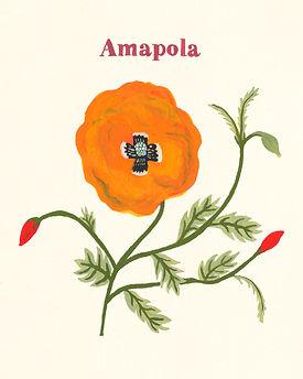 MarinaSiero-Amapola.jpg