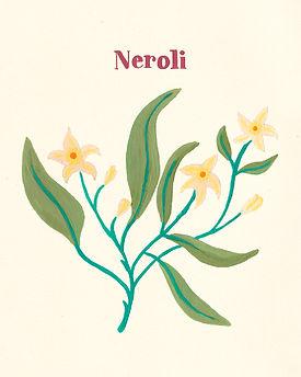MarinaSiero-Neroli.jpg