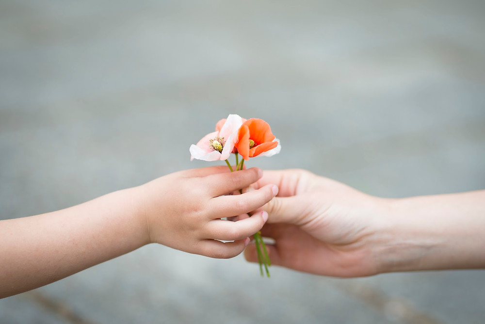 a child's hand giving a flower to another child's hand