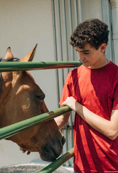 Equestrian Adopt-a-Horse