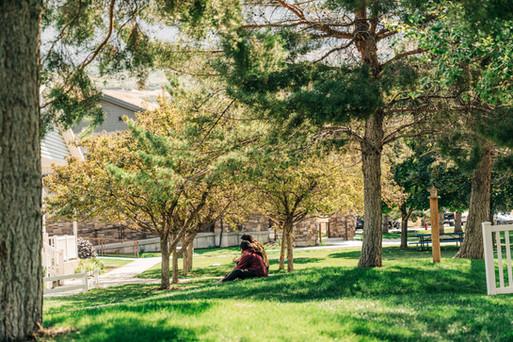 Therapeutic Campus