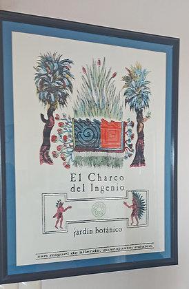 """San Miguel de Allende Poster """"El Charco del Ingenio"""" jardin botanico"""