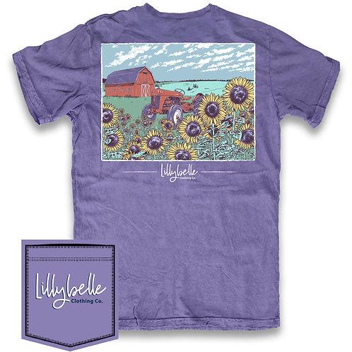 Lillybelle Sunflowers