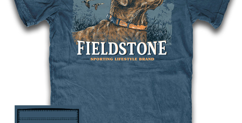 Fieldstone Chesapeake Bay Retriever