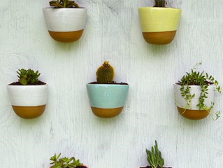 Planters for your green wall