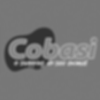 Logo_Cobasi grayscale.png