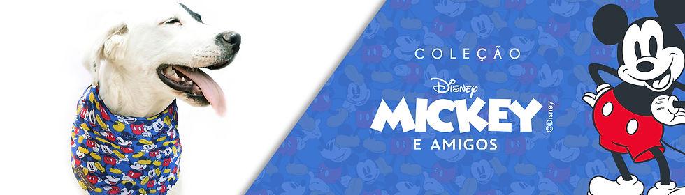 Banner Bandana Mickey.jpg