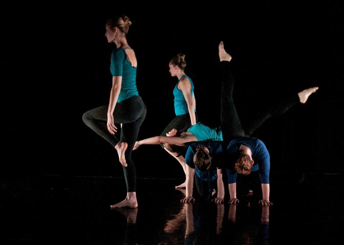 Studio Dansu Performance Company Madison