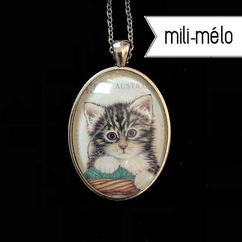 mili-mélo: Katzenbaby (Australien)