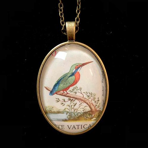 Eisvogel Vintage, Vatikan