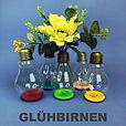Shop_Menue_Gluehbirnen.jpg