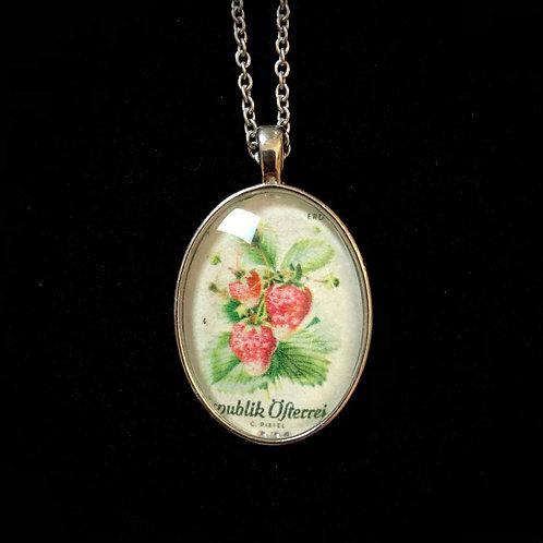 Erdbeere 1966