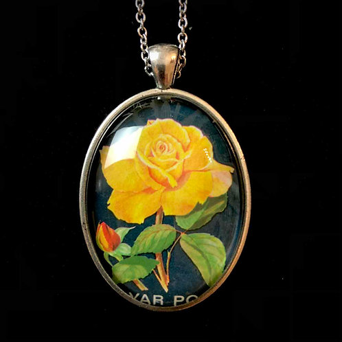 Rose (gelb)