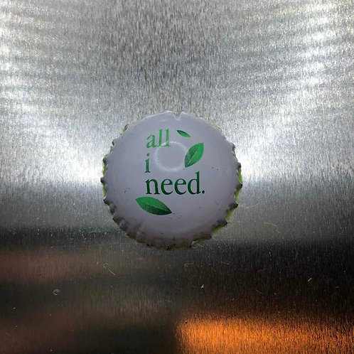 Kühlschrankmagnet (unbekannt) 030