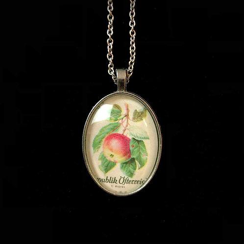 Apfel 1966