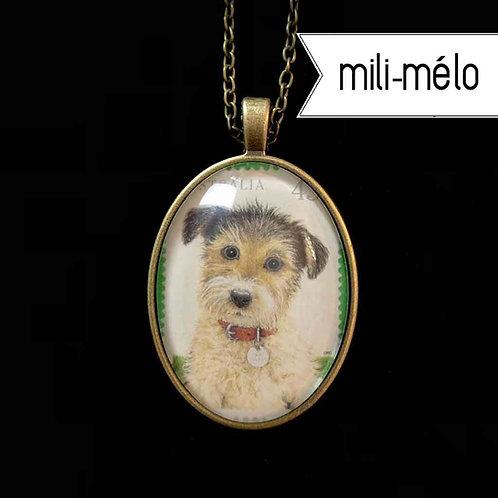 mili-mélo: Hundebaby (Australien)