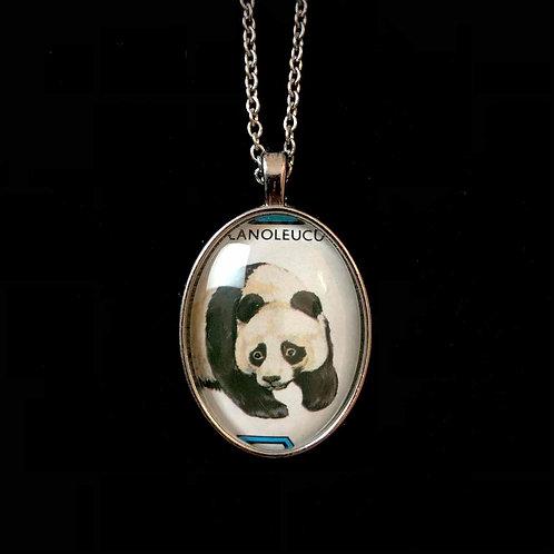 Panda, Mongolei 1977