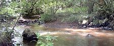 L'Isle, rivière aurifère