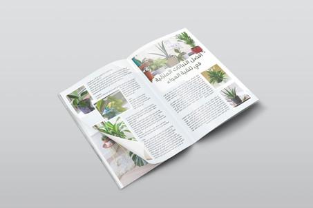 عالم النبات