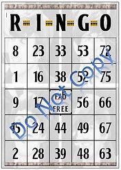 ringo bingo.jpg