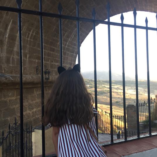 Looking around from the bridge