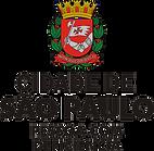 PESSOA_COM_DEFICIÊNCIA_CENTRALIZADO.png