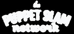 psn logo WHITE higher res.png