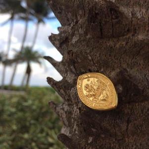 La médaille de Saint-martin à miami !