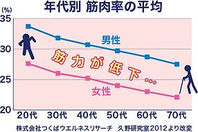 shikkari_graph001.png