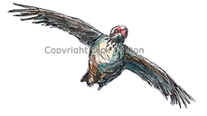 Partridge in flight bespoke shoot cards game cards game shooting original artwork