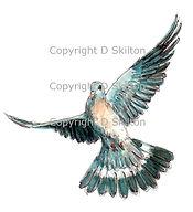 Pigeon in flight shoot cards bespoke artwork game shooting