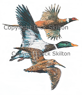 Phesant duck and woodcock in flight game shooting shoot cards