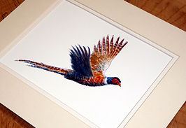10 x 12 flying pheasant.jpeg