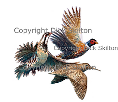 Pheasant partridge and woodcock game shooting shoot cards